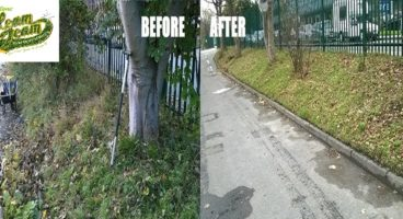 pruning-and-trimming-business-premises-maidstone