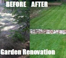 lawn-care-renovation-maidstone