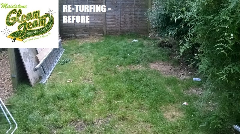 before-lawn-returfing-Maidstone