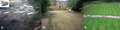 Gleam-Team-garden-renovation