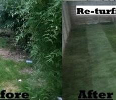 garden-turf-laying