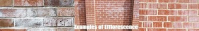 brick-wall-cleaning-maidstone-kent