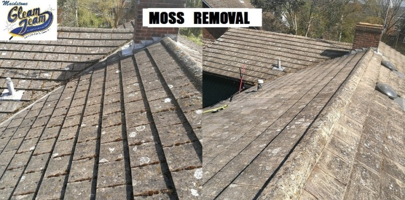 roof-soft-washing-south-london