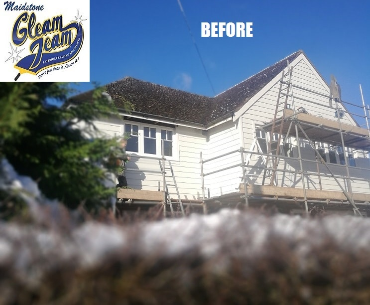 house-roof-before-moss-removal-soft-wash-cleaning-in-london