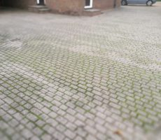 driveway-before-cleaning-Wrotham-Kent